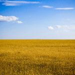 Яскрава Україна фото