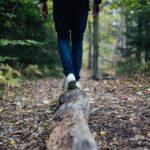 Чому корисно гуляти на природі?