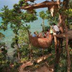 Дивовижний ресторан на дереві