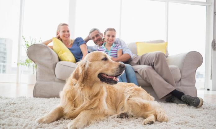 Як облаштувати зону сімейного відпочинк